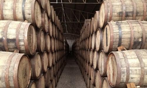 tequila-productos-mexicanos-exitosos-europa