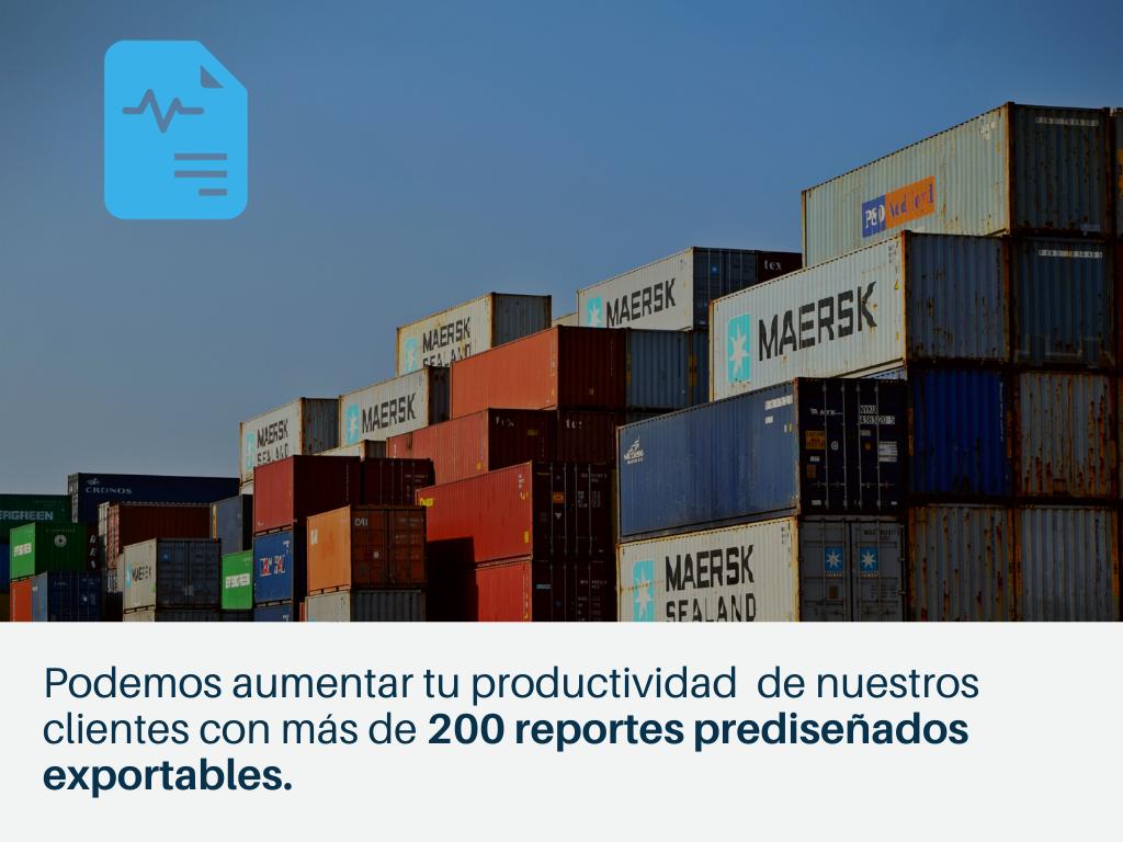 soluciones-logisticas-inteligentes-auditoria-comercio-exterior-2