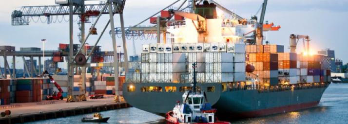 consultoria-comercio-exterior-en-reeimportacion.png